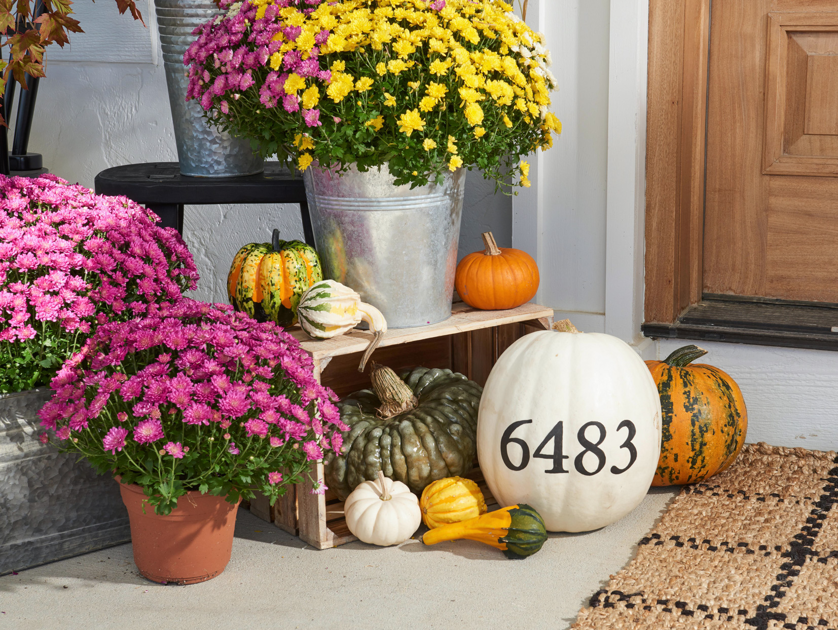House Number Painted Pumpkin