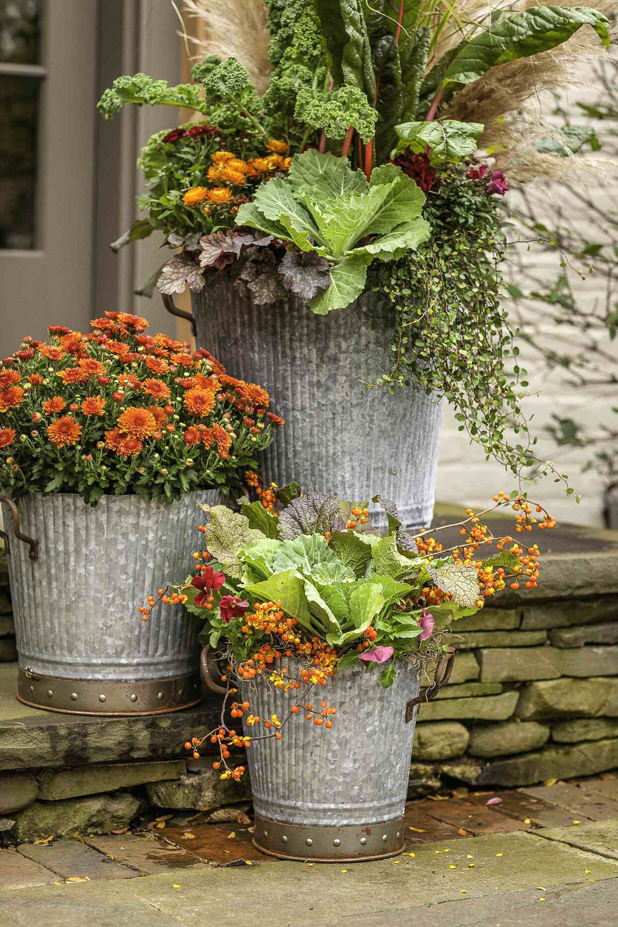 3 metal containers of plants