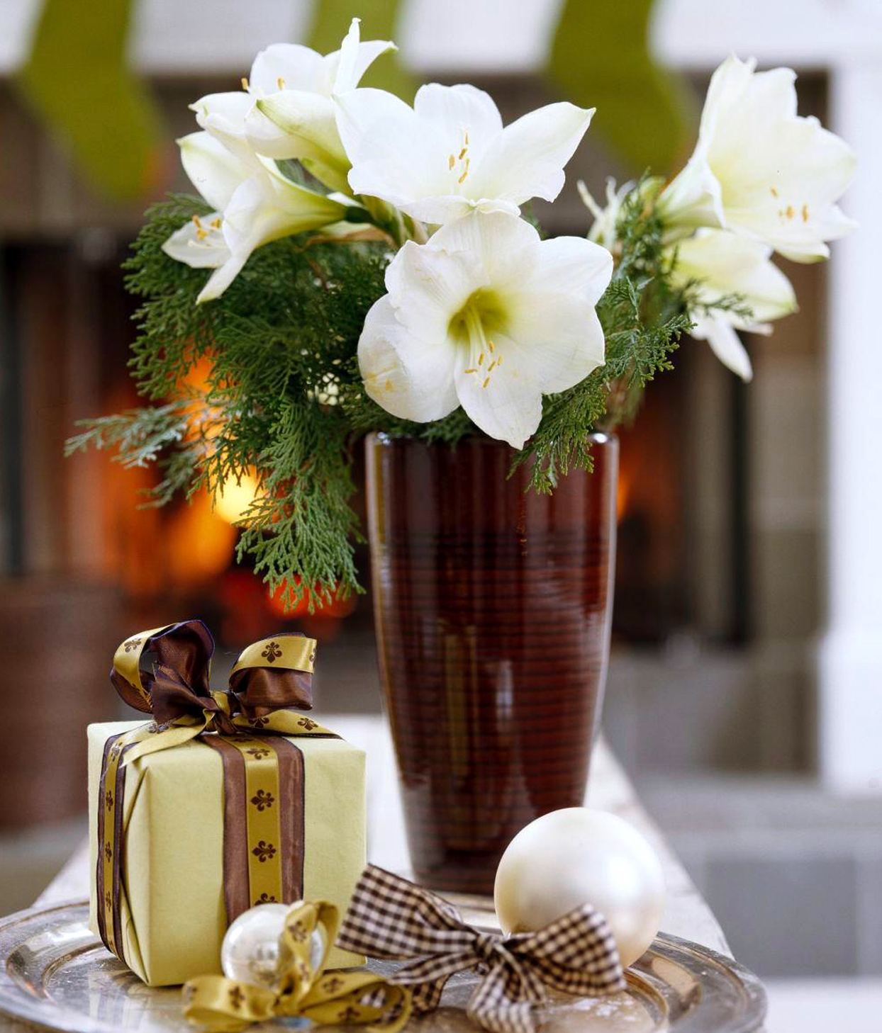 White Amaryllis with Evergreens