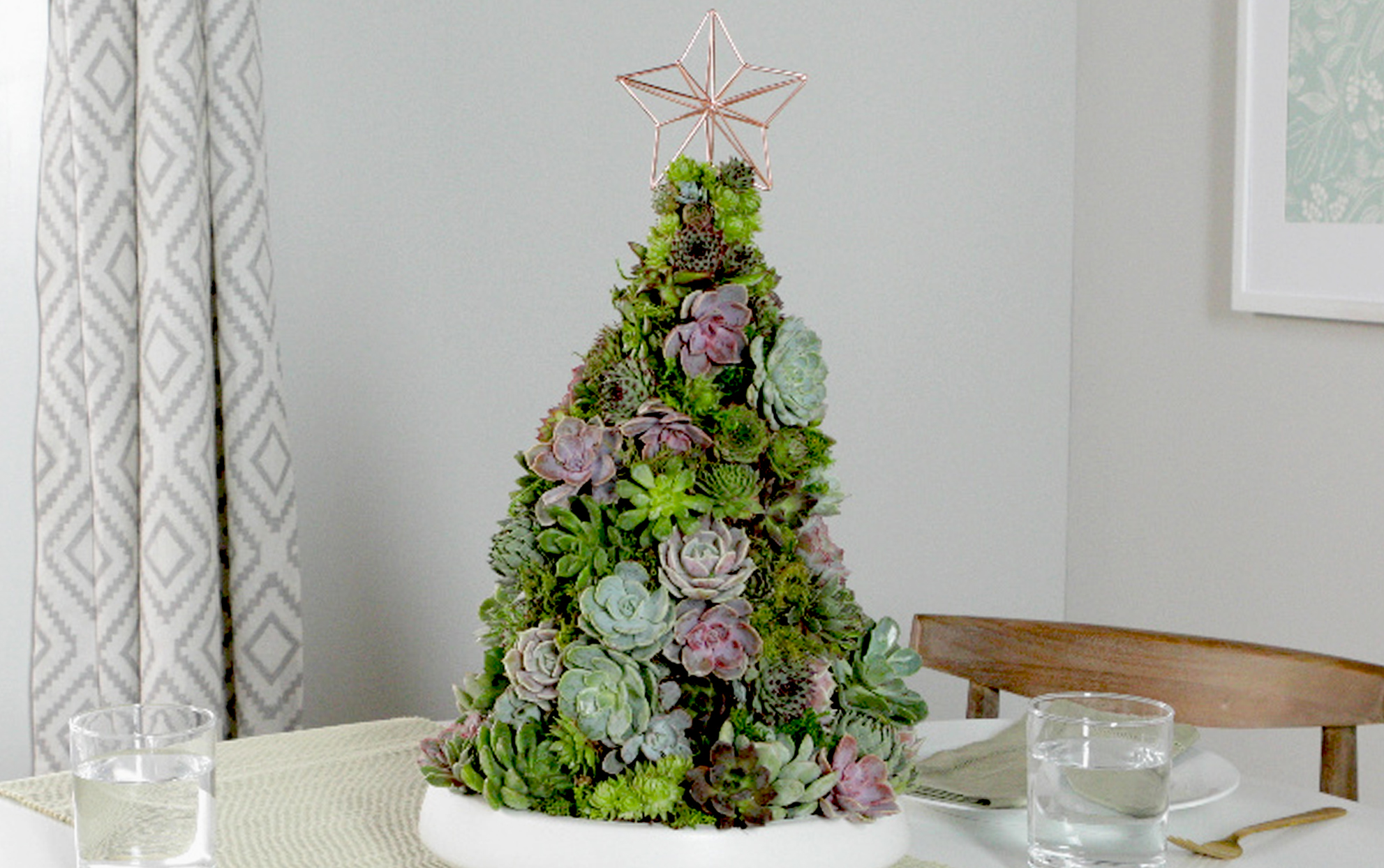 Succulent Christmas tree on a dining table
