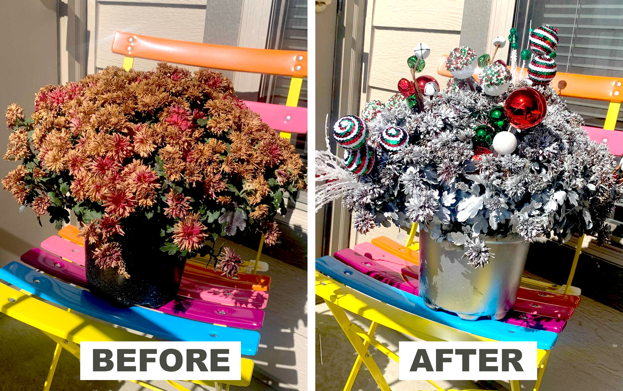 before and after of old mums on a chair and Christmas decorated mums on a chair