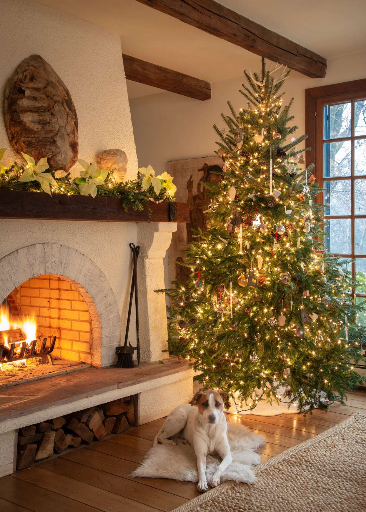 dog sitting in front of decorated christmas tree and fireplace