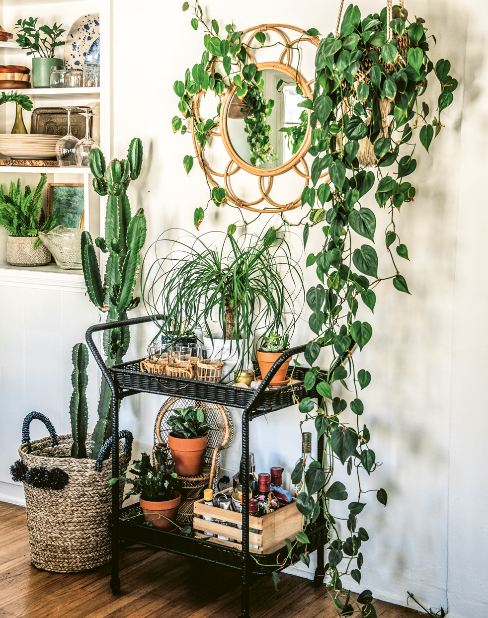 Houseplants with a round mirror and bar cart