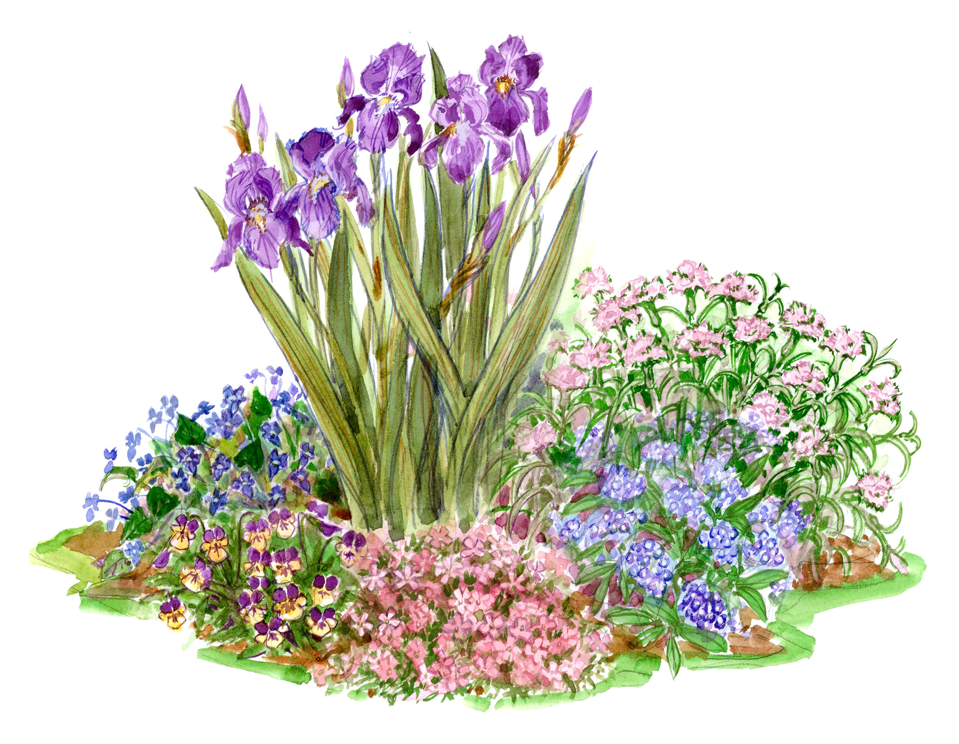 small space spring garden illustration