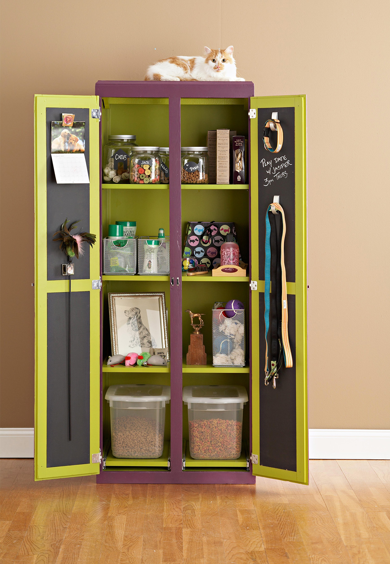 cat on green armoire pet supplies storage