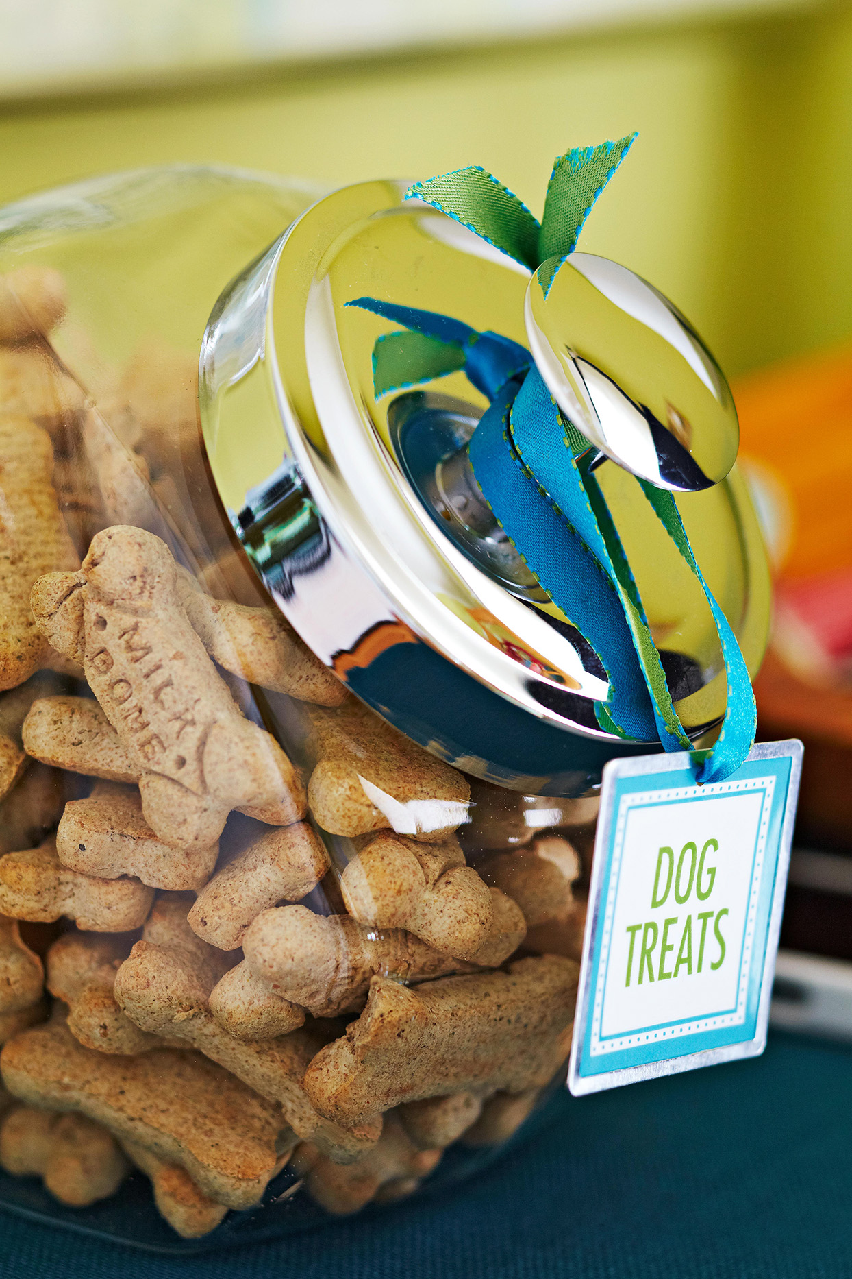 dog treats glass storage container