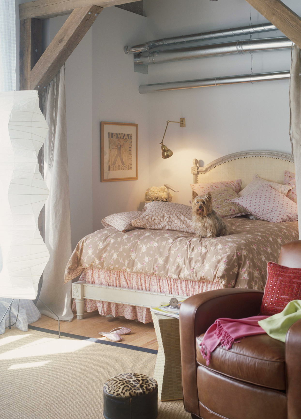 soft color bedding with dog