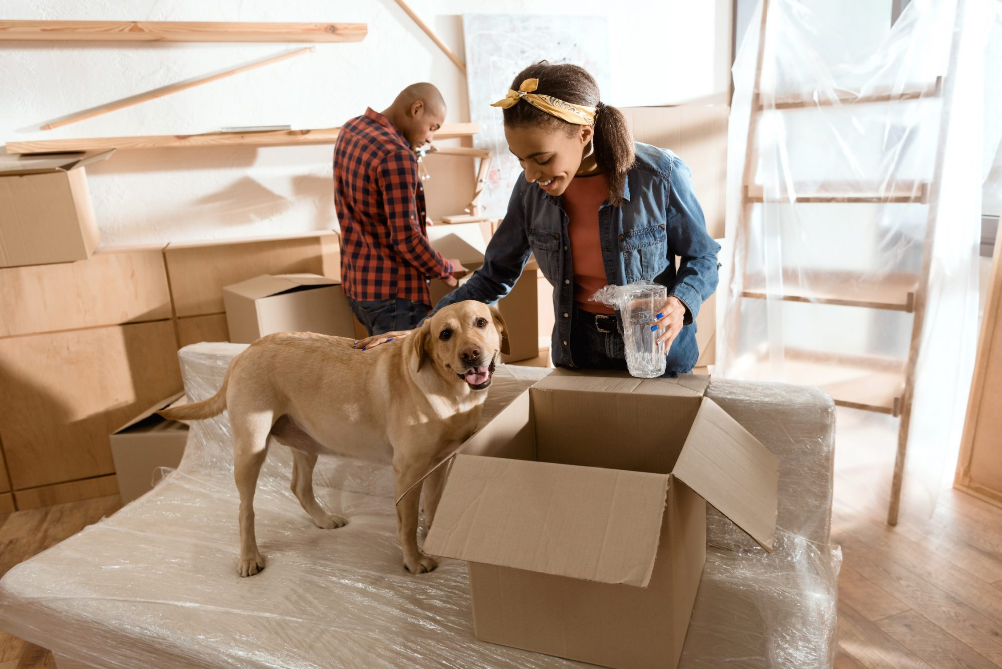 couple with labrador dog moving to new home