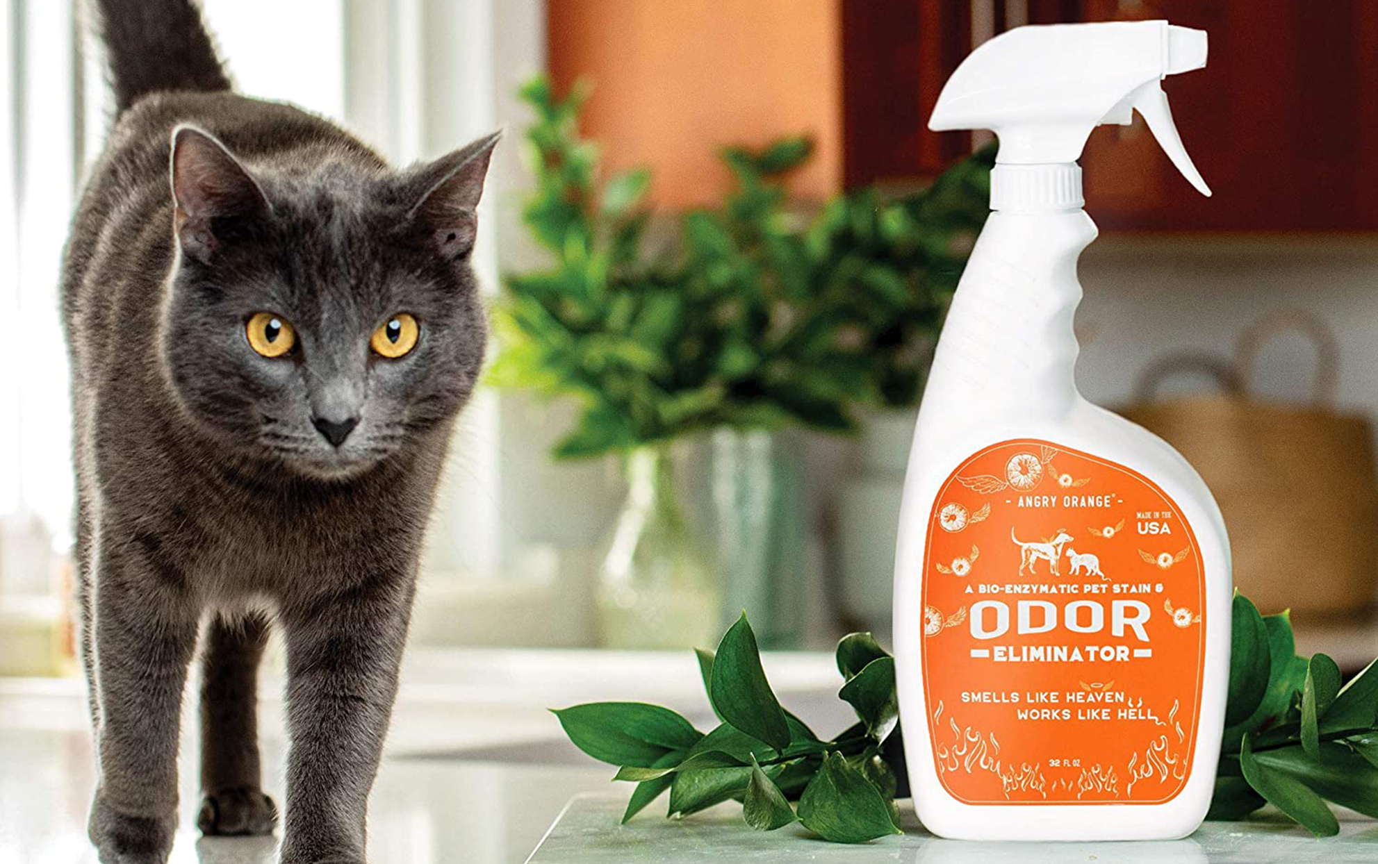 Angry Orange pet stain cleaner bottle with a grey cat