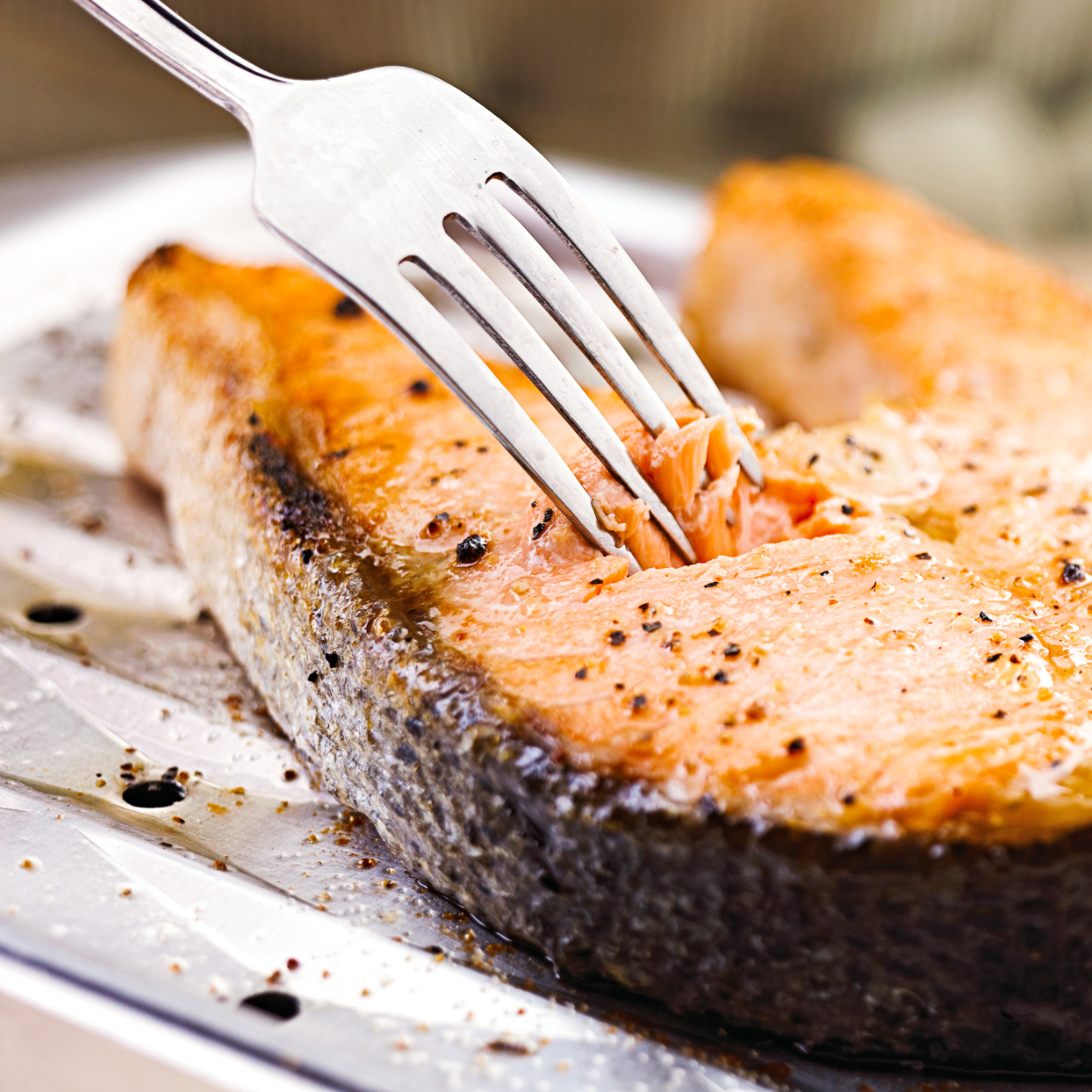 cooked filet of salmon with fork