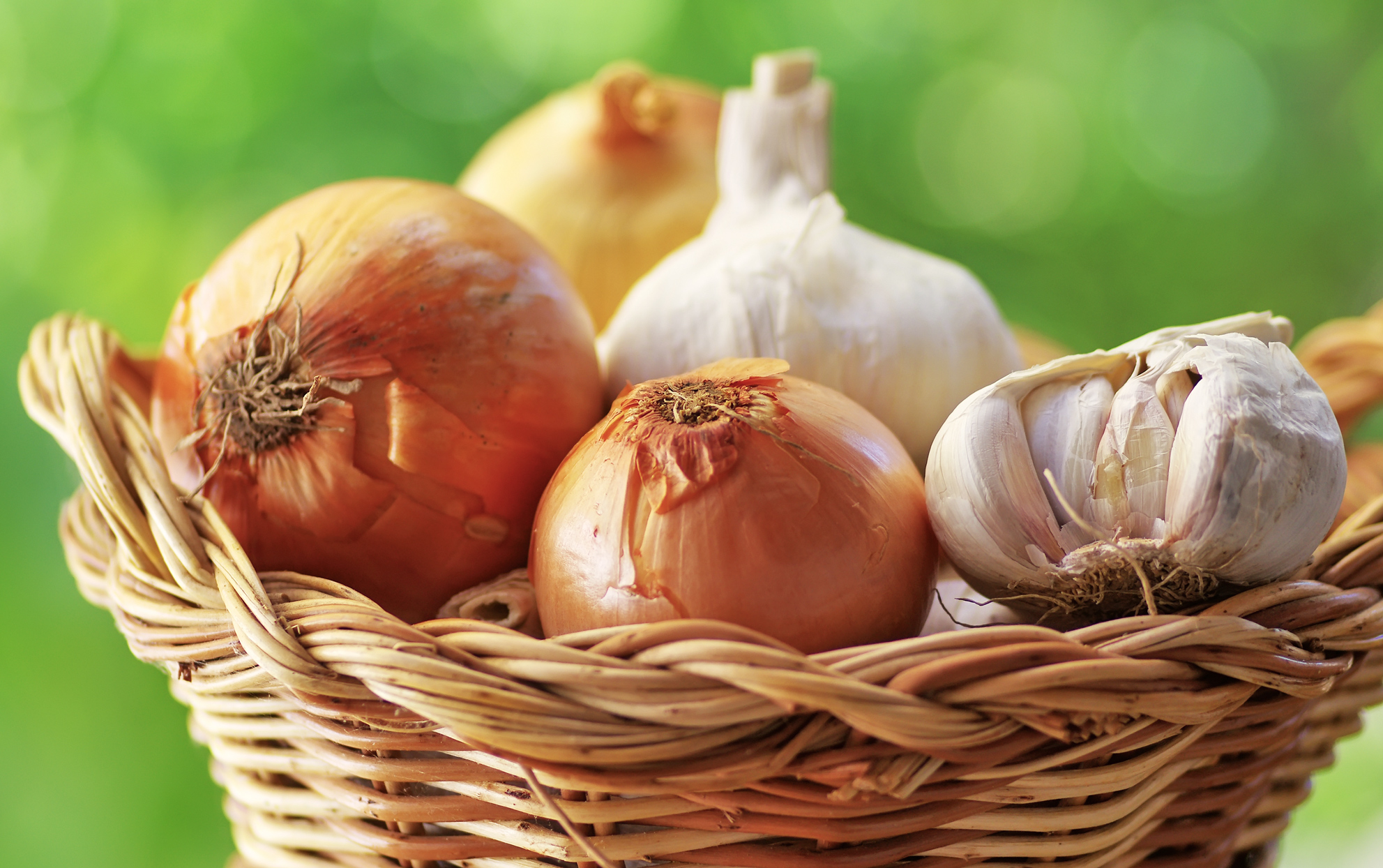 basket of onions and garlic
