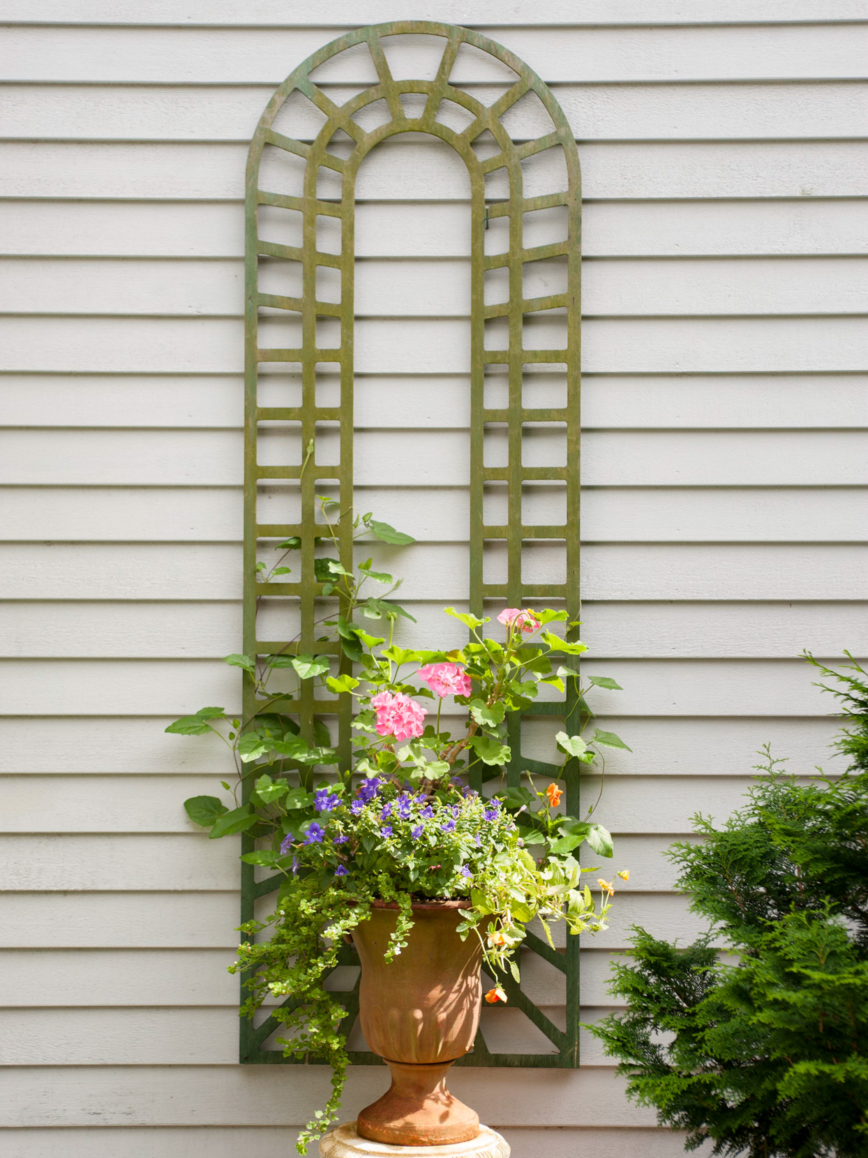 Custom Wall-Mount Trellis Ideas