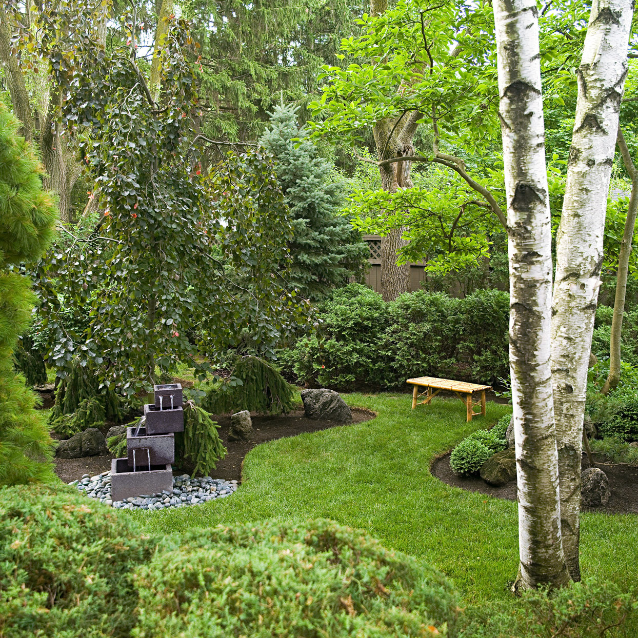 backyard nook created by trees and shrubs