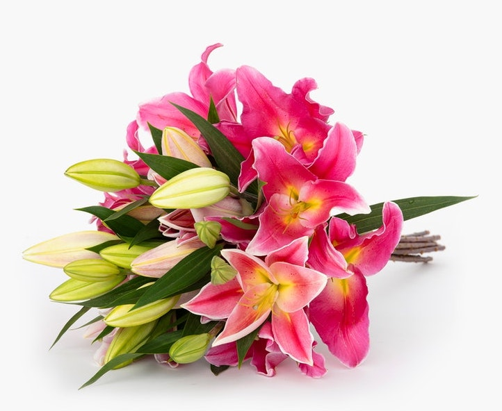bouquet of pink lillies