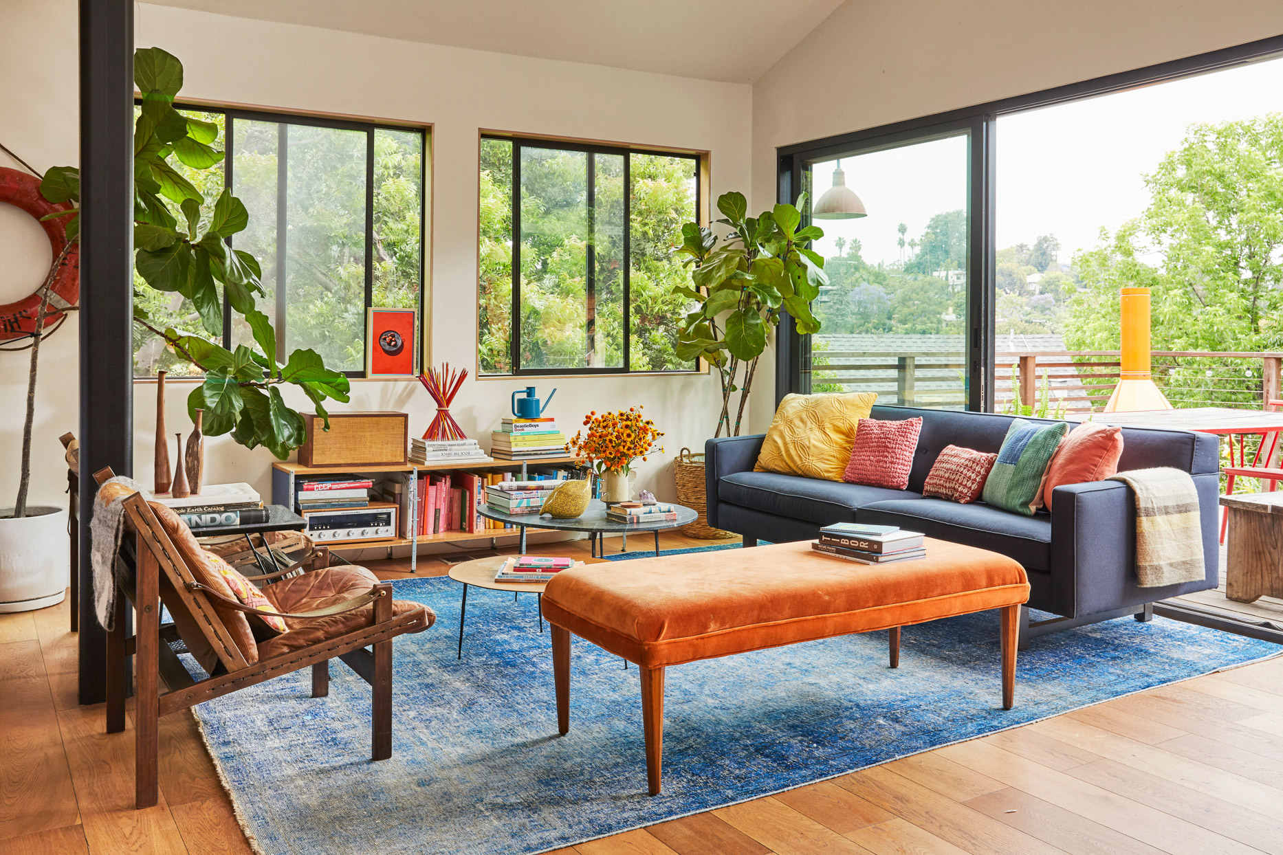 bright colorful living room with large windows and plants
