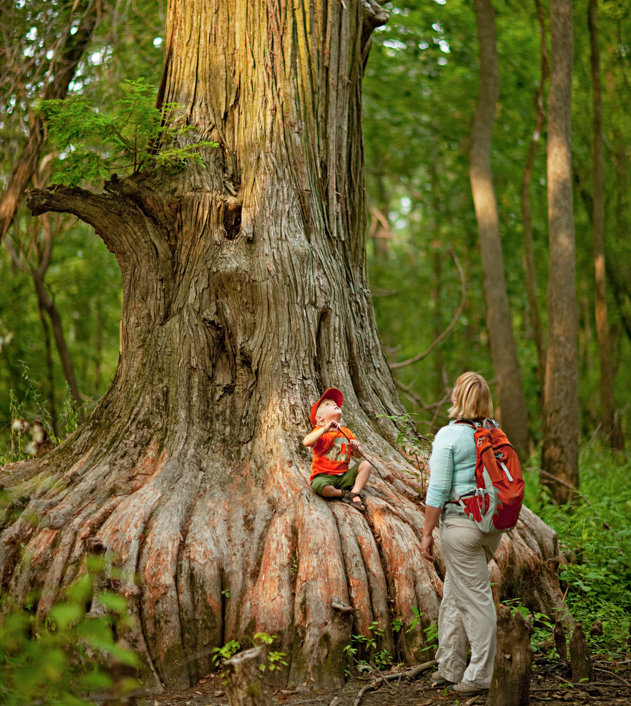 Woman and Child at Cypress Tree