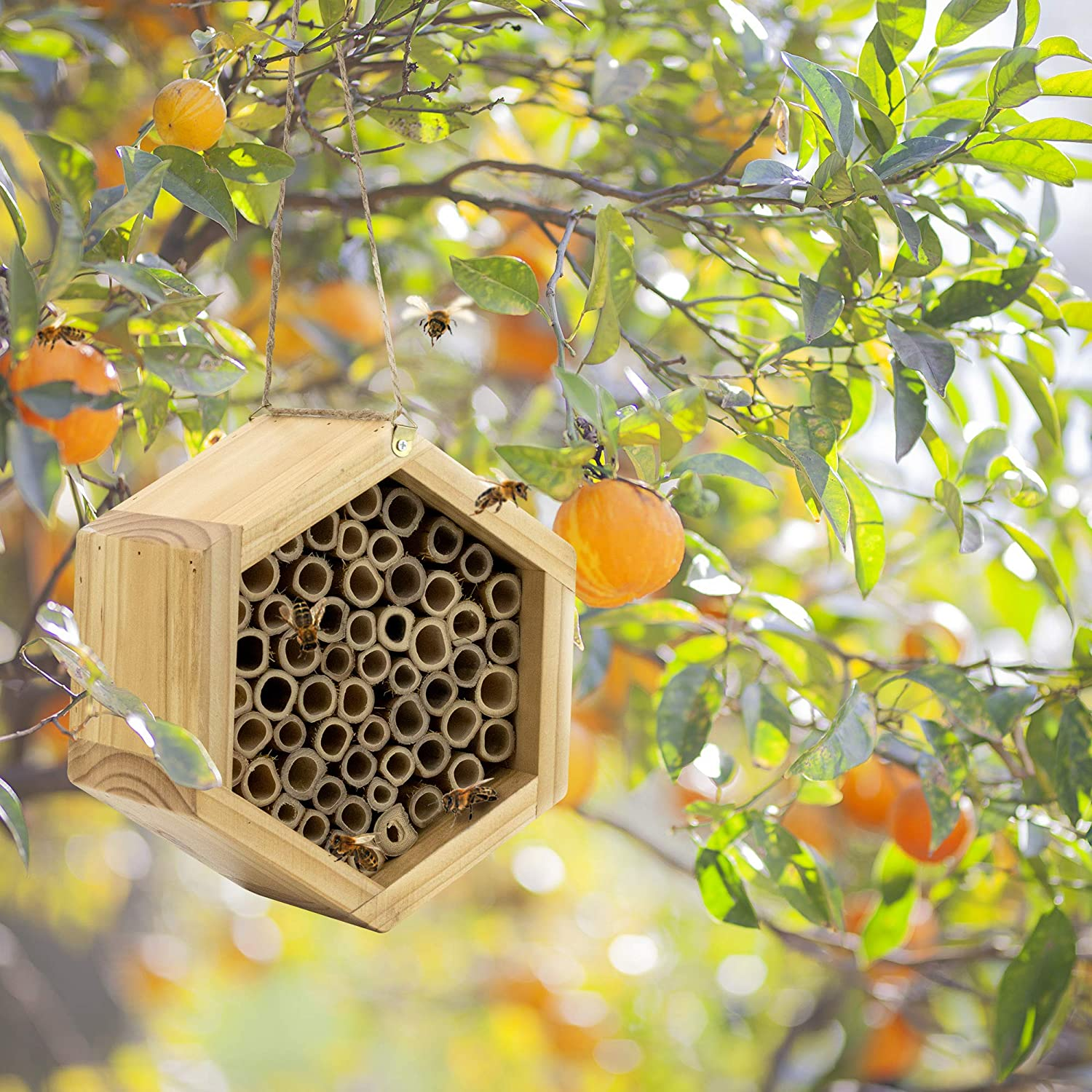 Help One of Your Favorite Pollinators Flourish with an Adorable Bee House
