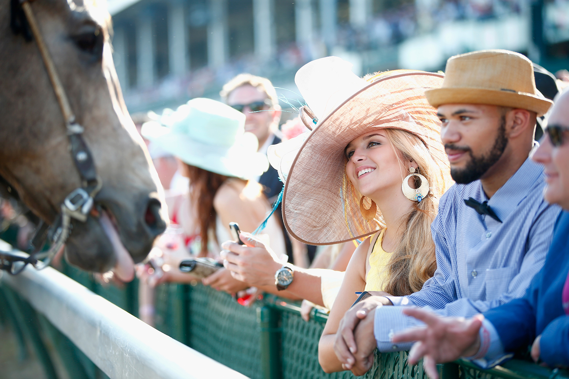guests engage with horse at kentucky derby