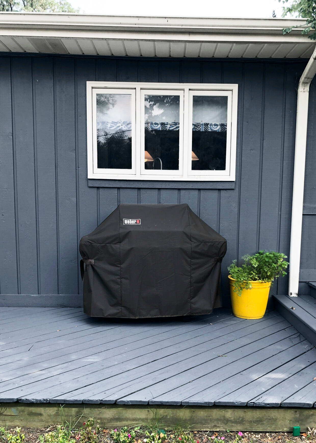 weber grill and plant
