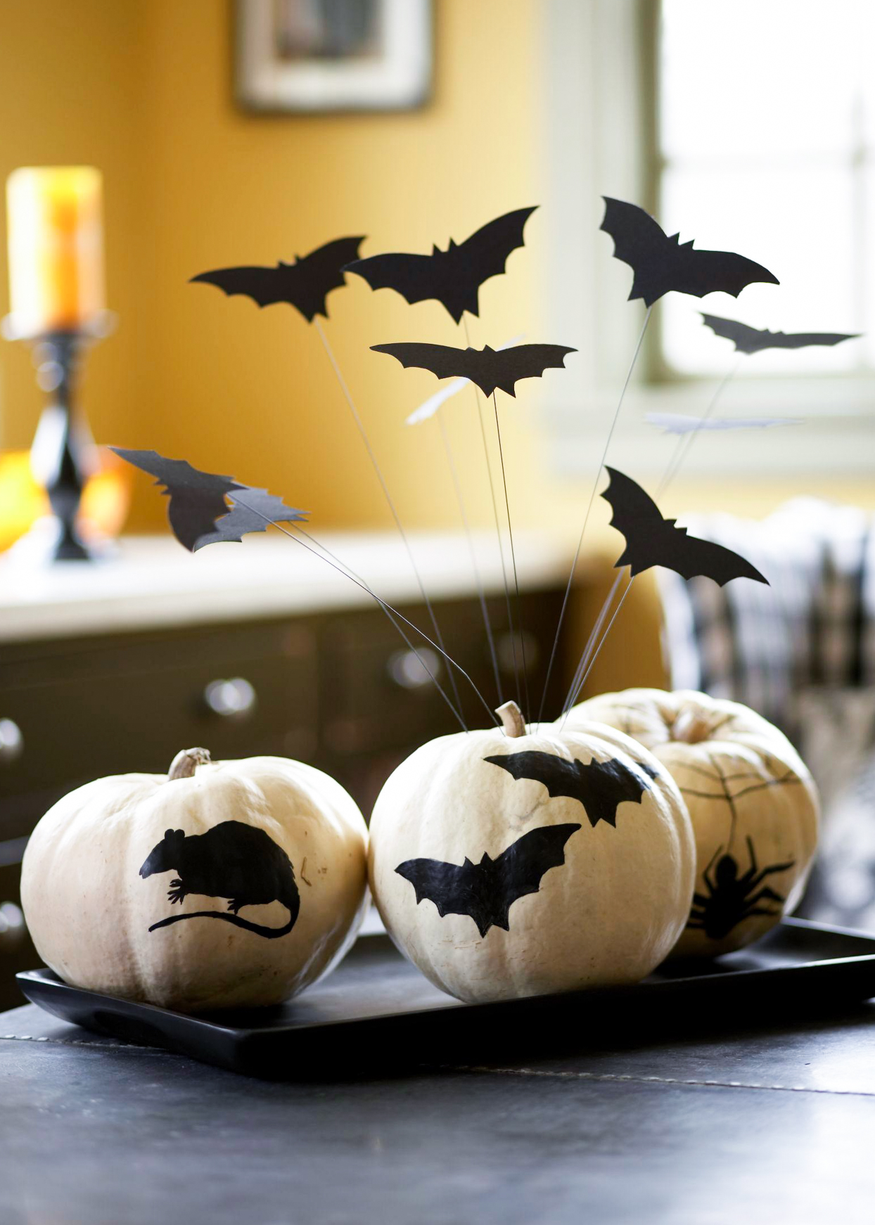 white pumpkins painted with rats and bats