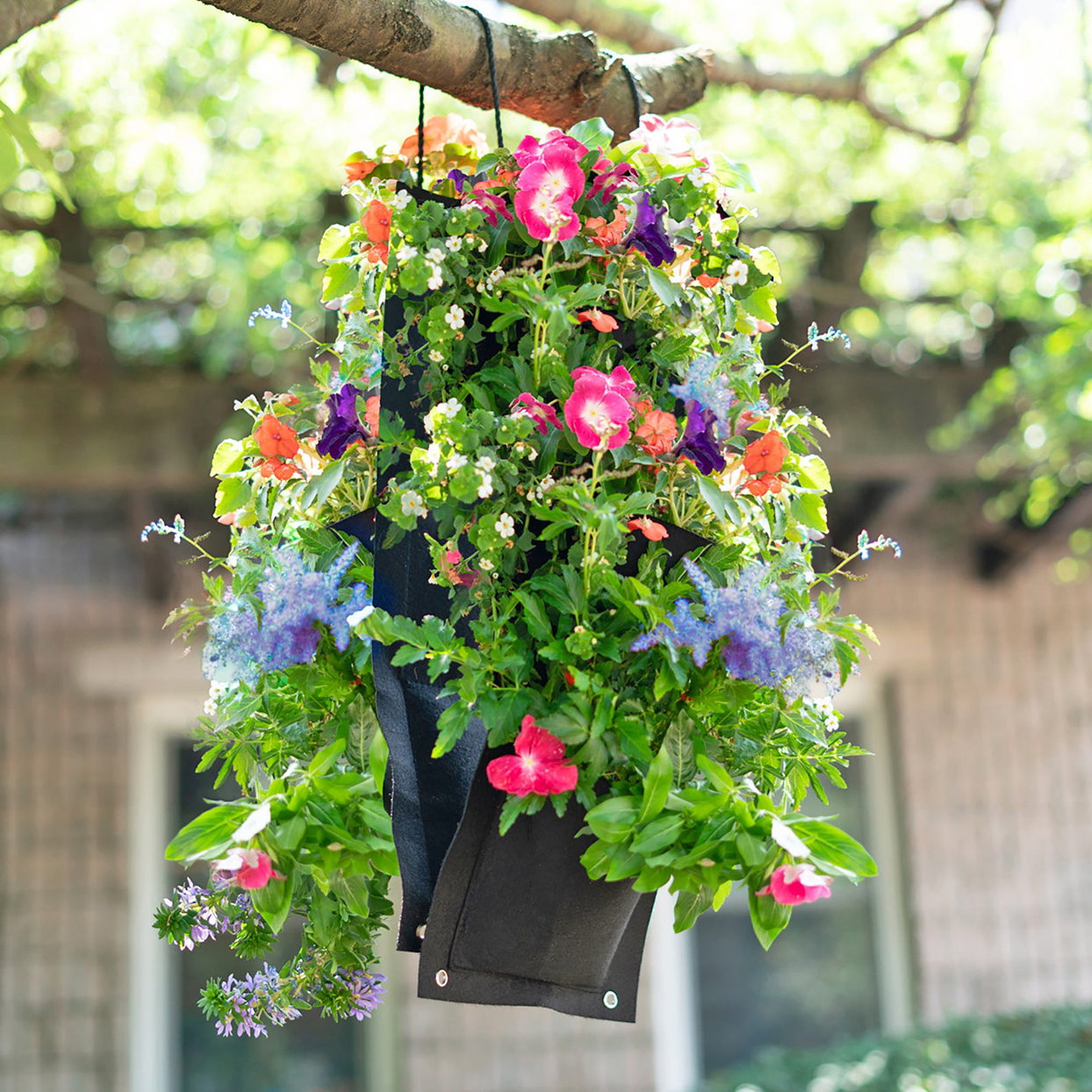 Vertical Hanging Flower Garden Planter Grow Bag Kit with Annuals to Attract Hummingbirds