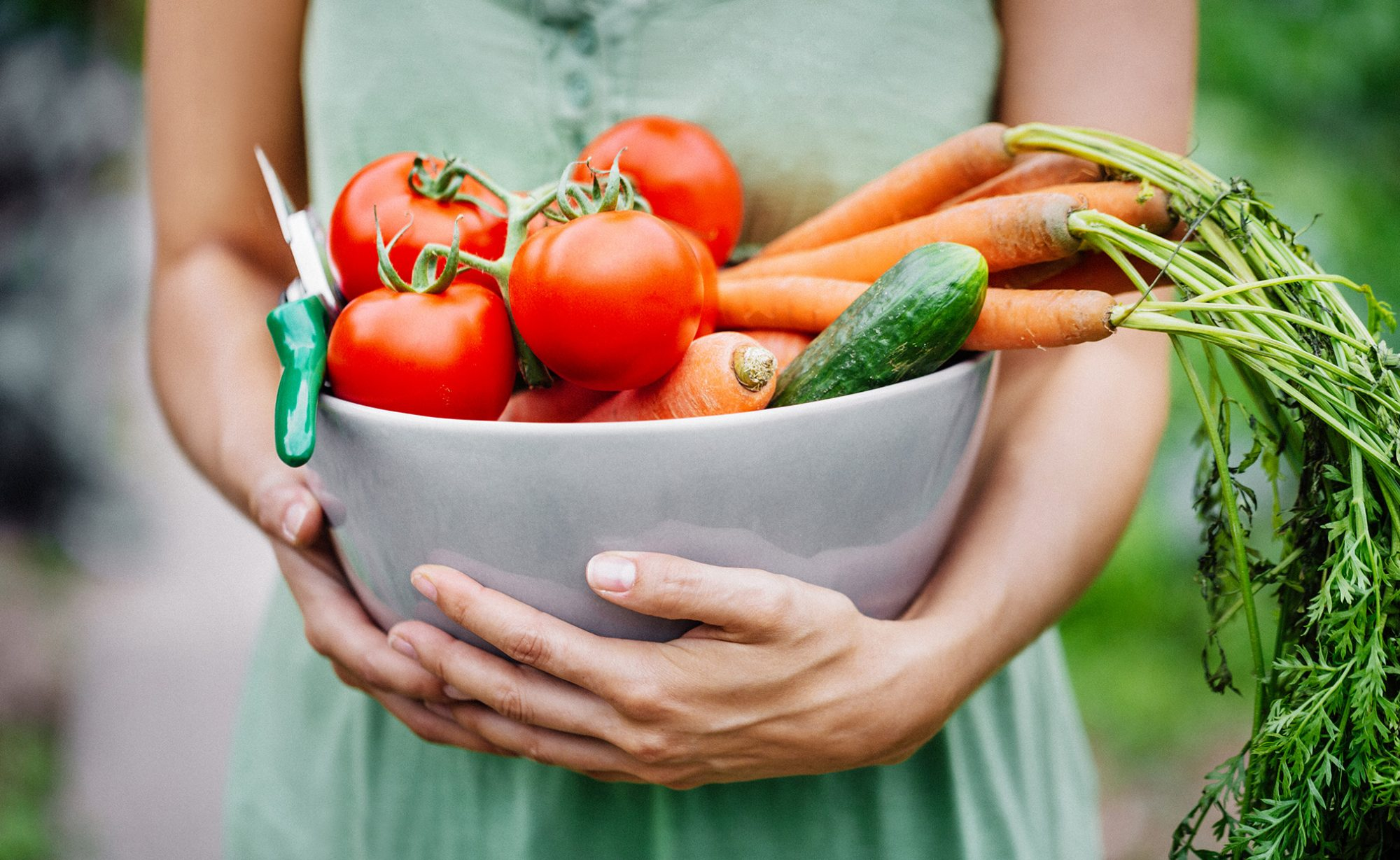 woman holding bowl of vegetables harvested from garden