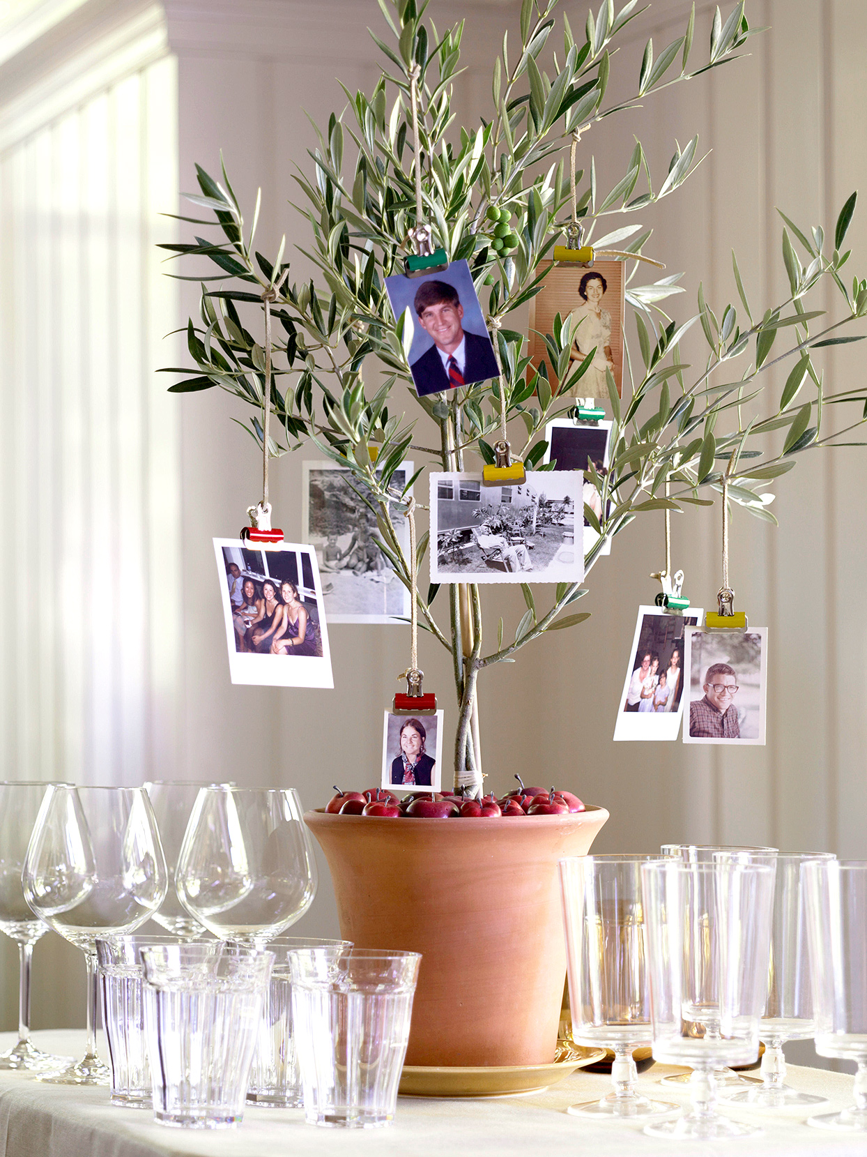 potted thanksgiving family tree pictures