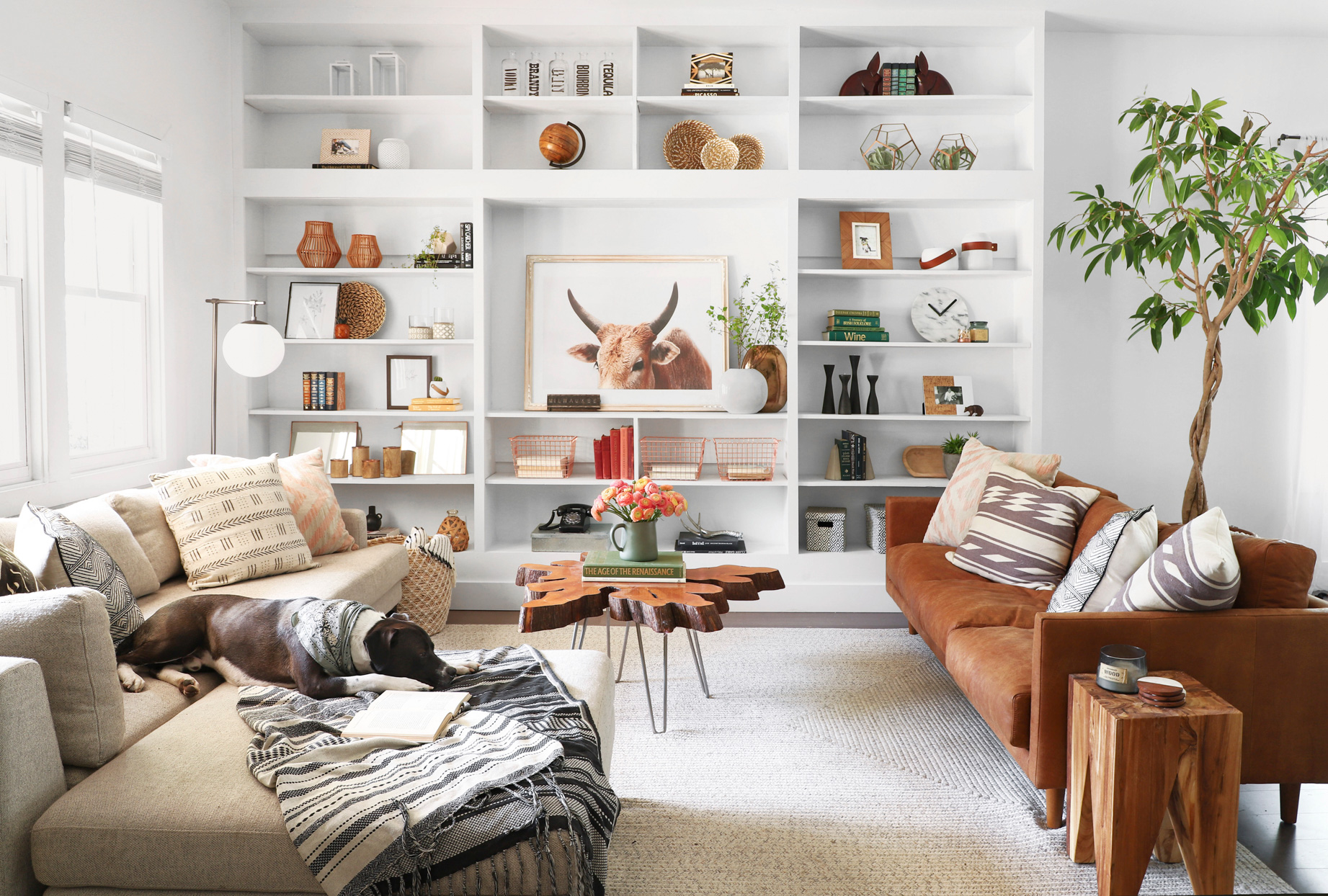 living room with two couches and display shelves