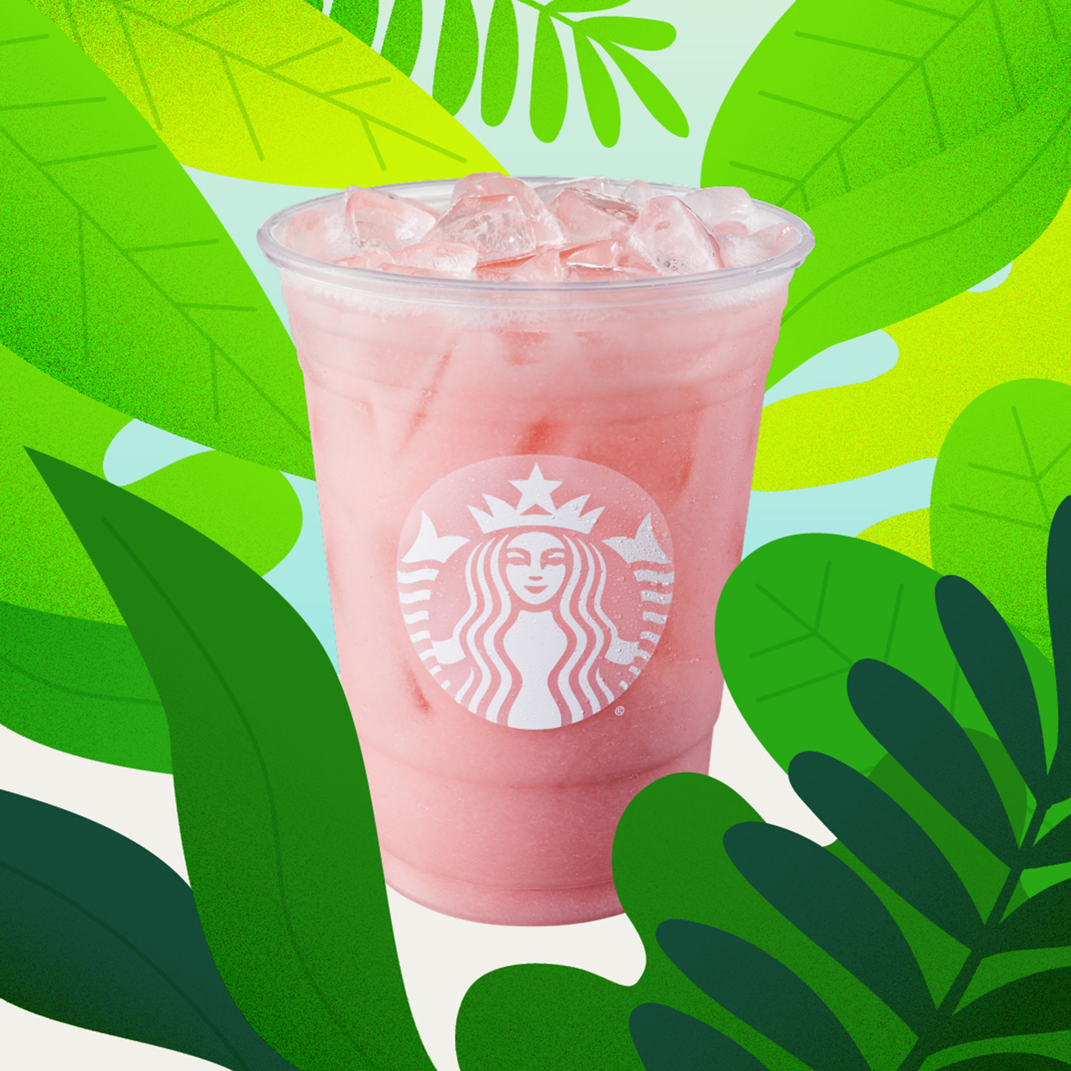 Starbucks drinks