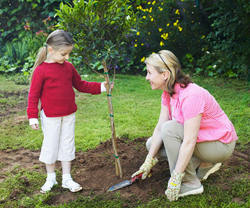 mom and daughter planting tree