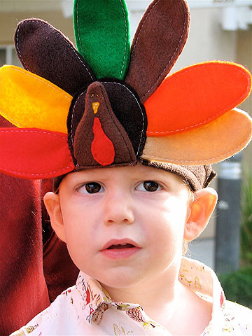 Felt Turkey Hat