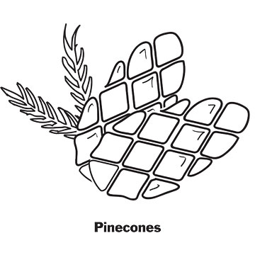 pinecones printable