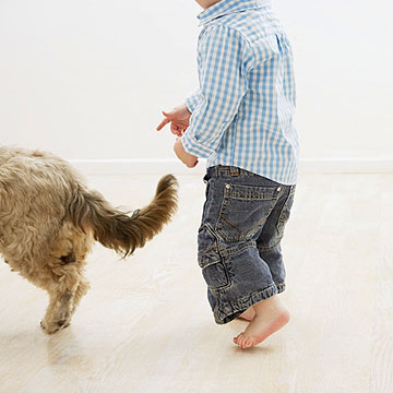 toddler running after dog