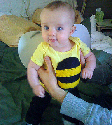 bumble bee Halloween costume-1276793430652.xml