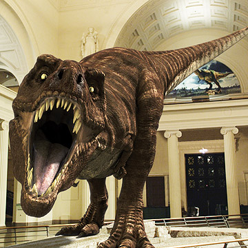 Dinosaur Addicts: Get Close to a Giant T-Rex
