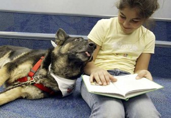 reading to dog 29213