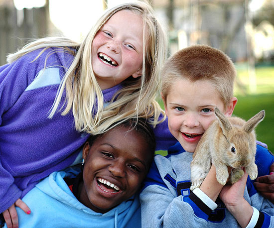 kids playing with rabbit