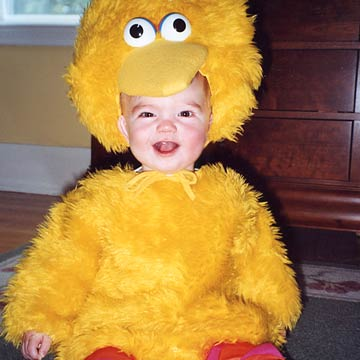 Ryan Big Bird-ryanbigbird_08032004.xml