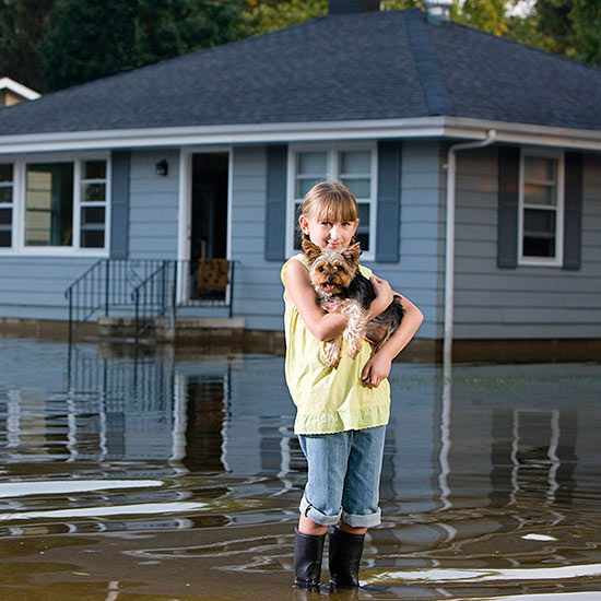Child holding puppy during flood