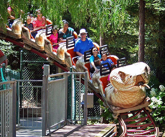 Timber Twister Coaster