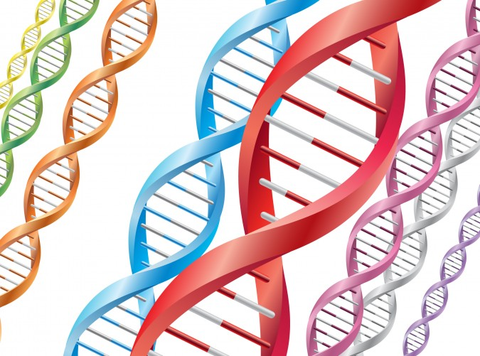 Colorful DNA strands genetics