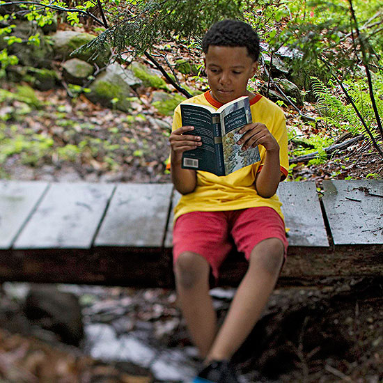 child reading in woods