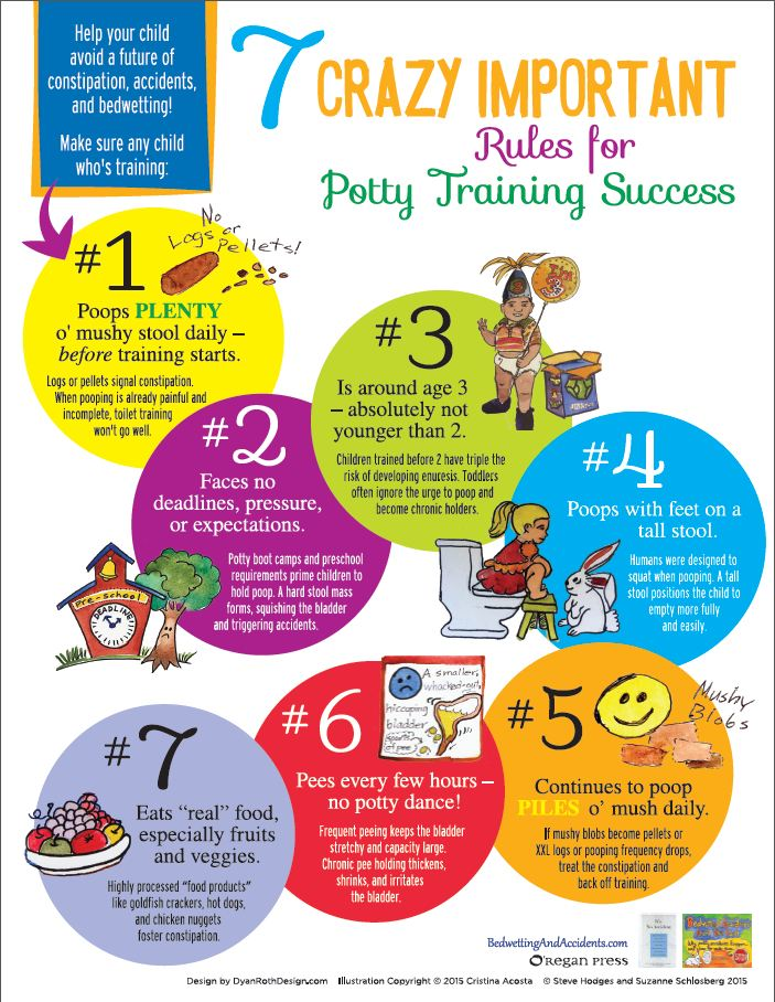 potty training infographic