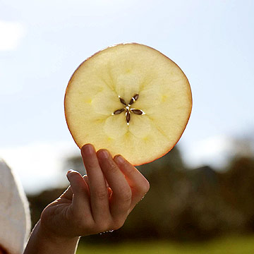 Sliced apple with star