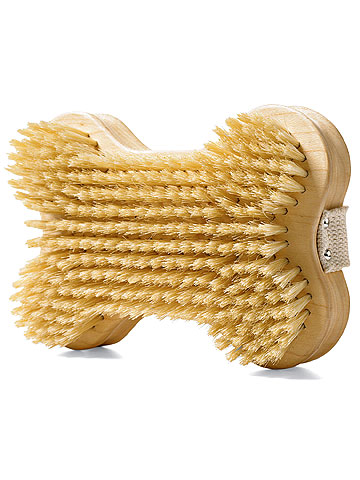 dog bone brush