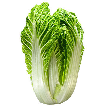 N is for Napa Cabbage