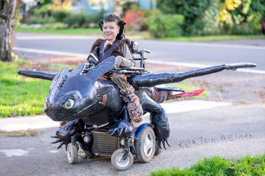 magic wheelchair toothless costume