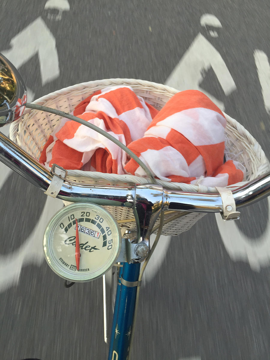 Cadet bike basket and speedometer