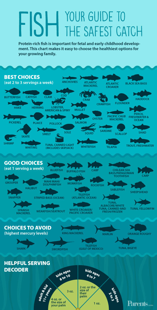Safe Fish Infographic