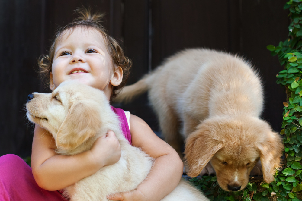 Puppies and Babies hug